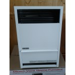 Fournaise Williams 14 000 BTU Direct-Vent